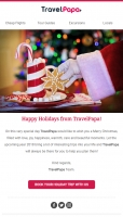 Happy Holidays from TravelPapa Family!